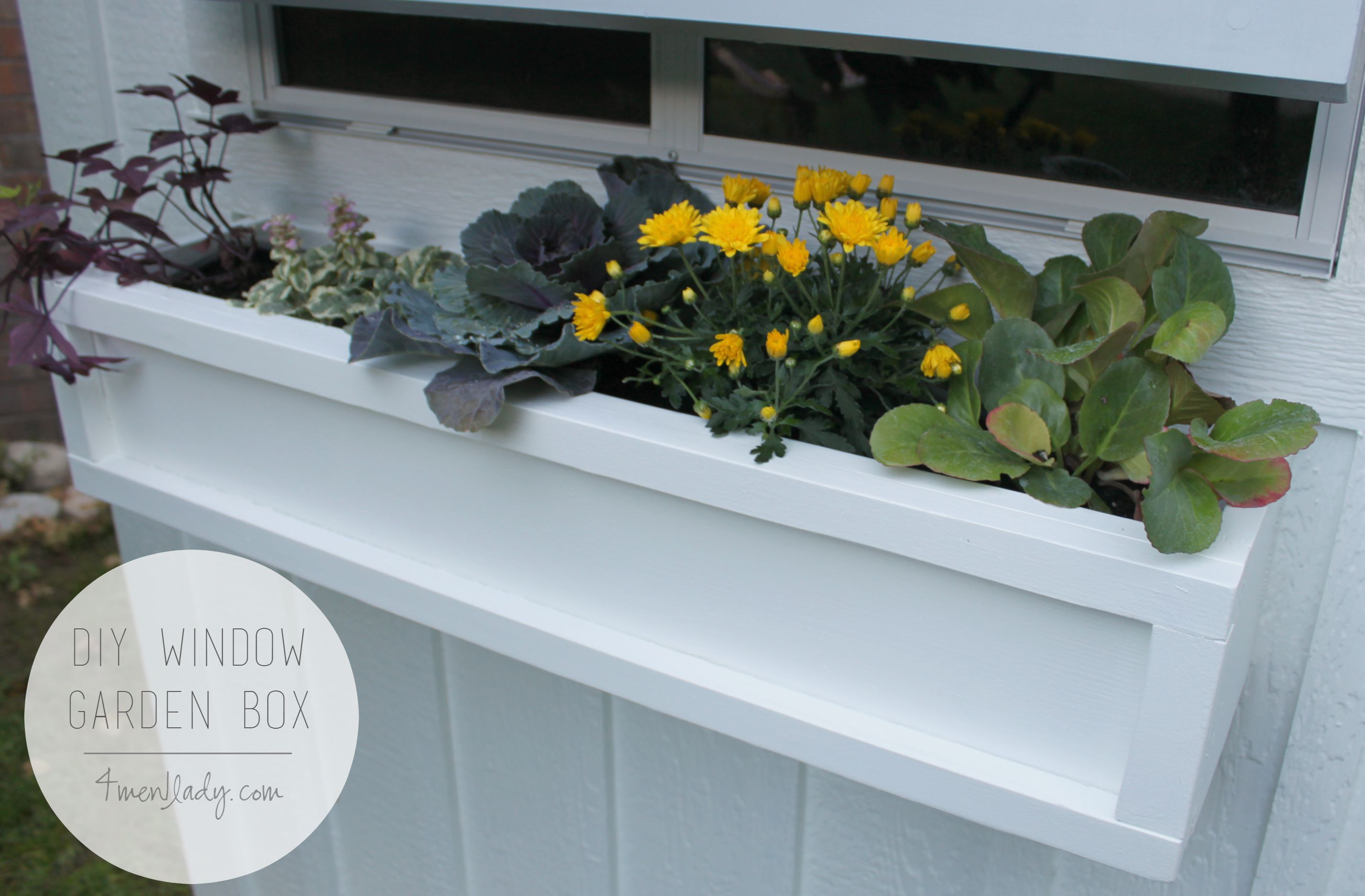 diy window garden boxes. Black Bedroom Furniture Sets. Home Design Ideas